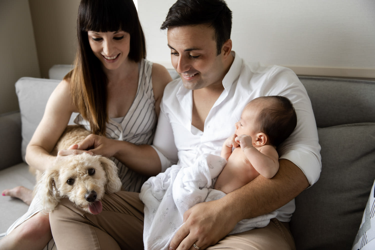 Family-with-pets, simple and beautiful maternity photography in Brisbane- QuinceandMulberry