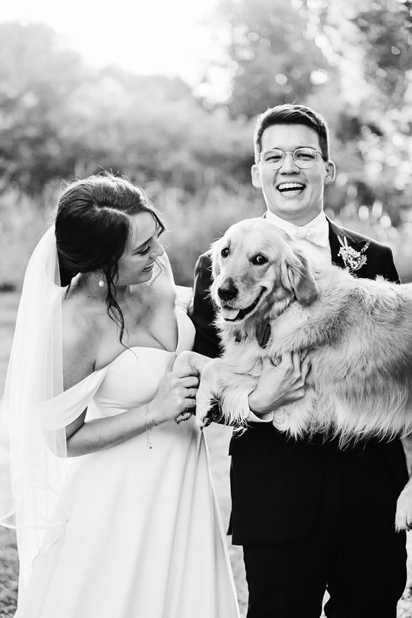 Labrador-with bride and groom-Honest, natural, fun, romantic family-wedding-photography in Ewingsdale-QuinceandMulberryStudios